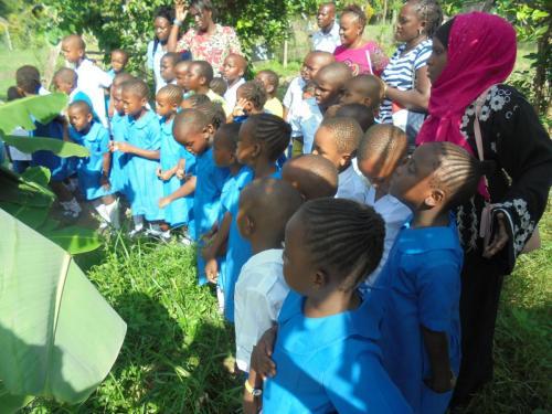 School Trips Grade 1 Sabu Farm 7-6-2018